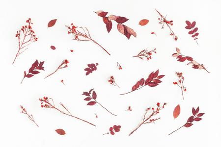 Осенняя композиция. Шаблон из осенних цветов и листьев. Плоский, вид сверху Фото со стока