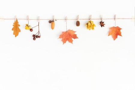 Jesienna kompozycja. Jesienne liście i kwiaty, żołądź, sosna stożek, anyż gwiazda. Płaski, górny widok, miejsce na kopię