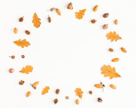 Composición del otoño. Marco de hojas de roble de otoño y conos de pino sobre fondo blanco. Flat lay, vista desde arriba, copia espacio