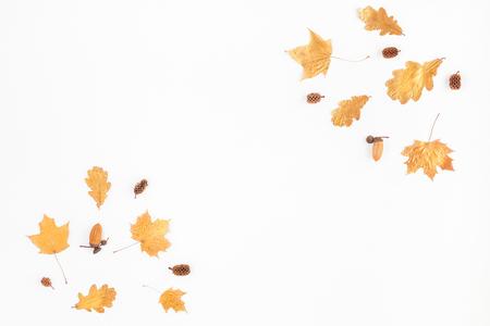 Composición del otoño. Marco hecho de las hojas del árbol de arce del otoño y de los conos del pino en el fondo blanco. Flat lay, vista desde arriba, copia espacio