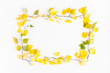 Autumn frame made of birch tree leaves on white background. Autumn, fall concept. Flat lay, top view, copy space