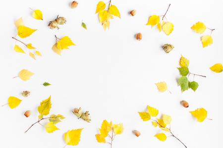 Jesienią ramki wykonane z brzozy liści drzewa, orzechy laskowe na białym tle. Jesienią, koncepcja upadku. Płaski, górny widok, miejsce na kopię