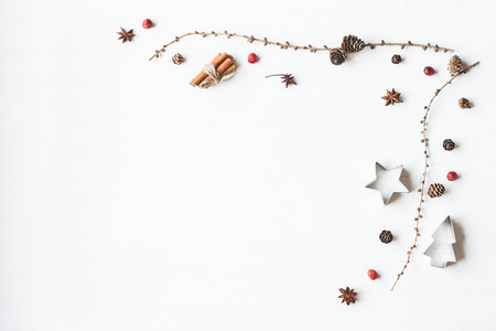 Christmas composition. Larch branches, cinnamon sticks, anise star, dried cranberry. Christmas frame. Flat lay, top view Archivio Fotografico
