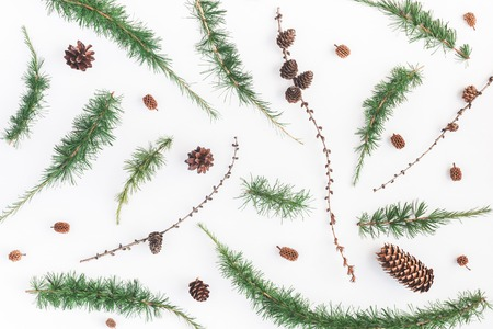 Christmas composition. Pattern made of larch branches on white. Christmas, winter, new year concept. Flat lay, top view 写真素材