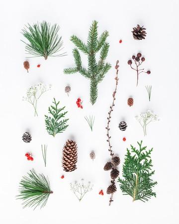 Kerst samenstelling. Patroon dat van verschillende de winterinstallaties wordt gemaakt op witte achtergrond. Kerstmis, winter, nieuw jaar concept. Plat leggen, bovenaanzicht