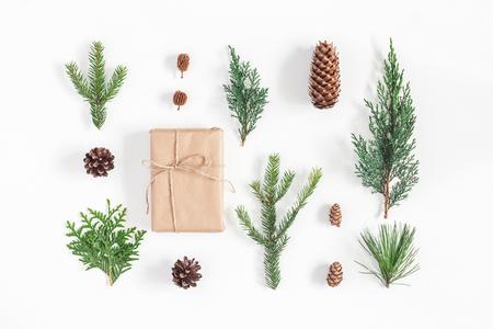 Weihnachtskomposition. Geschenk, verschiedene Winterpflanzen auf Weiß. Weihnachten, Winter, Konzept des neuen Jahres. Flache Lage, Draufsicht Lizenzfreie Bilder