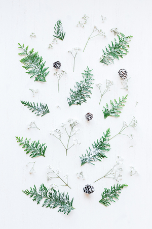 Winter pattern made of pine cones, thuja branches and gypsophila flowers. Winter composition. Top view, flat lay