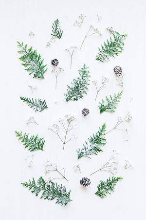 Wintermuster gemacht von den Kiefernkegeln, von den thuja Niederlassungen und von den Gypsophilablumen. Winter Zusammensetzung. Draufsicht, flache Lage
