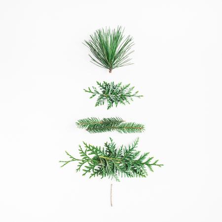 Arbre de Noël fait de différentes plantes d'hiver. Noël, hiver, concept de nouvel an. Plat poser, vue de dessus, carré