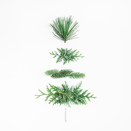 Christmas tree made of different winter plants. Christmas, winter, new year concept. Flat lay, top view, square
