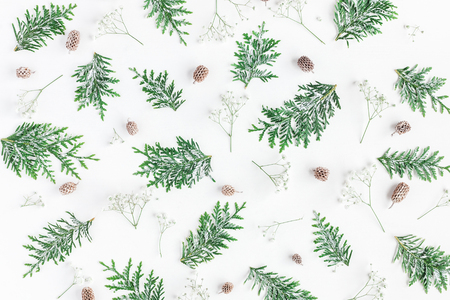 Christmas composition. Pattern made of thuja branches, gypsophila flowers, pine cones on white background. Christmas, winter, new year concept. Flat lay, top view