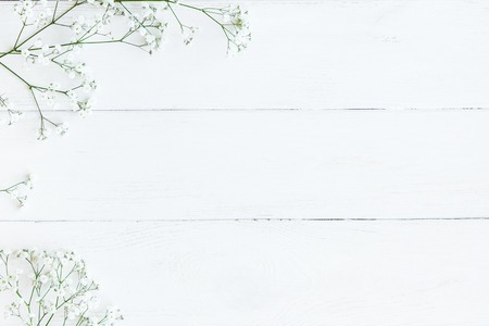 Rahmen aus Gypsophila Blumen. Winterrahmen. Flache Lage, Draufsicht