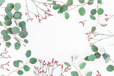 Flowers composition. Frame made of eucalyptus branches and pink flowers on white background. Flat lay, top view, copy space 写真素材
