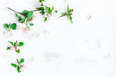 Flowers composition. Frame made of apple tree flowers on white background. Flat lay, top view, copy space