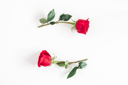 Flowers composition. Frame made of rose flowers on white background. Flat lay, top view, copy space Standard-Bild