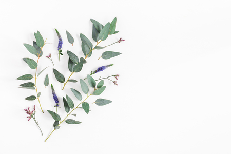 Flowers composition. Pattern made of purple flowers and eucalyptus branches on white background. Flat lay, top view, copy space
