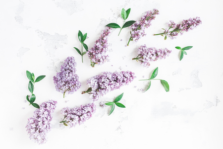 Flowers composition. Lilac flowers, green leaves on white background. Flat lay, top view