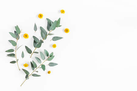Flowers composition. Pattern made of yellow flowers and eucalyptus branches on white background. Flat lay, top view, copy space Фото со стока