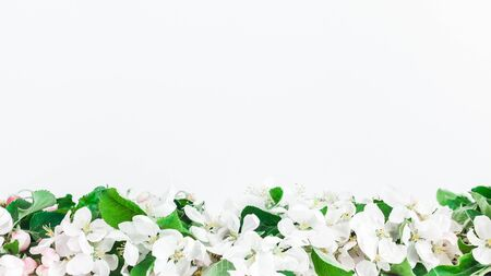 Flowers composition. Border made of flowers on white background. Flat lay, top view, copy space
