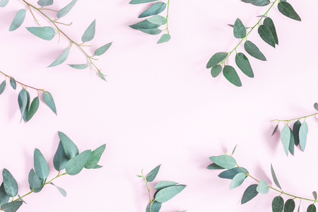 Eucalyptus leaves on pink background. Frame made of eucalyptus branches. Flat lay, top view, copy space Фото со стока