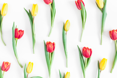 Flowers composition. Pattern made of tulip flowers on white background. Flat lay, top view