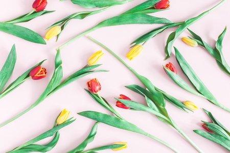 Flowers composition. Pattern made of tulip flowers on pink background. Flat lay, top view