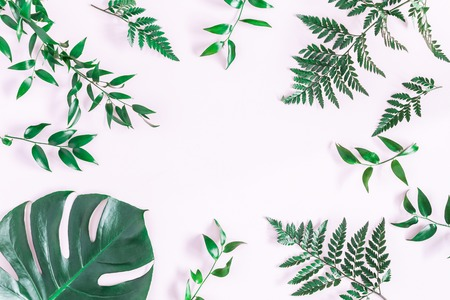 Leaf pattern. Green tropical leaves on pink background. Flat lay, top view, copy space Фото со стока