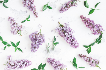 Flowers composition. Lilac flowers, green leaves on white background. Flat lay, top view Standard-Bild - 96045794