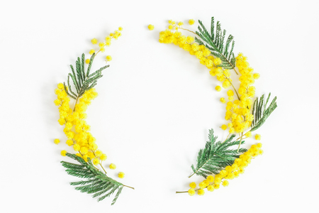 Flowers composition. Wreath made of mimosa flowers on white background. Flat lay, top view, copy space