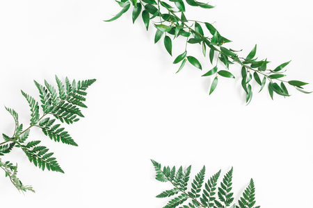 Leaf pattern. Green tropical leaves on white background. Flat lay, top view, copy space Stockfoto