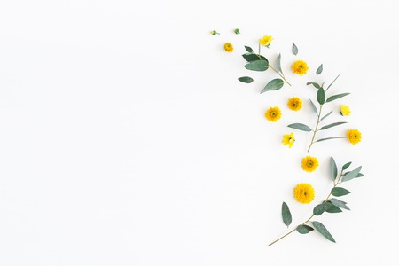 Flowers composition. Pattern made of yellow flowers and eucalyptus leaves on white background. Flat lay, top view, copy space Stockfoto