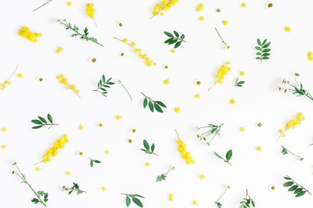 Flowers composition. Pattern made of fistachio leaves and yellow flowers on white background. Easter, spring, summer concept. Flat lay, top view Stockfoto