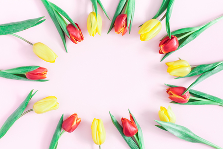 Flowers composition. Frame made of tulip flowers on pink background. Flat lay, top view, copy space
