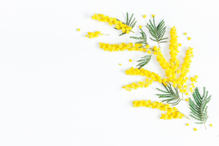 Flowers composition. Frame made of mimosa flowers on white background. Flat lay, top view, copy space Stockfoto
