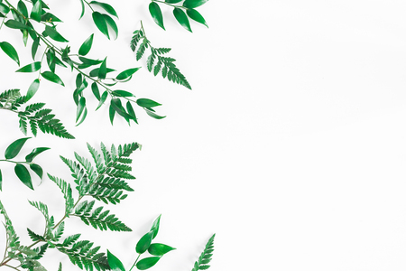 Leaf pattern. Green tropical leaves on white background. Flat lay, top view, copy space Reklamní fotografie