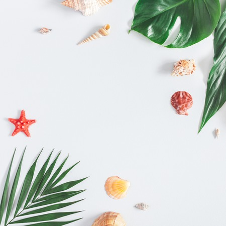 Summer tropical composition. Frame made of green tropical leaves and sea shells on gray background. Summer travel concept. Flat lay, top view, square, copy space Stock Photo