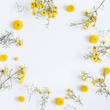 Blumenzusammensetzung. Feld gemacht von den gelben Blumen auf grauem Hintergrund. Flache Lage, Draufsicht, Quadrat, Kopienraum Standard-Bild - 98856482