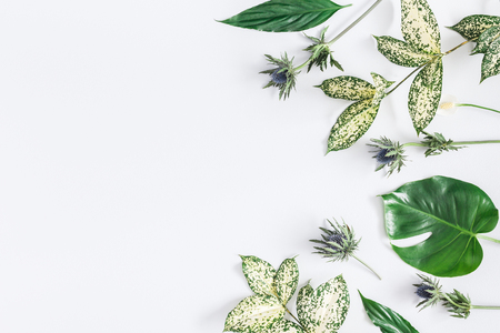 Summer tropical composition. Green tropical leaves and flowers on gray background. Summer concept. Flat lay, top view, copy space