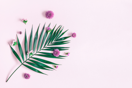 Summer flowers composition. Green tropical leaf and pink flowers on pink background. Summer concept. Flat lay, top view, copy space Stock Photo