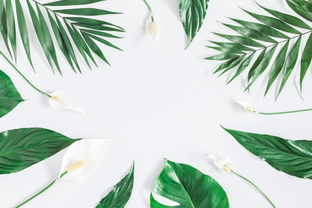 Summer tropical composition. Green tropical leaves and white flowers on gray background. Summer concept. Flat lay, top view, copy space