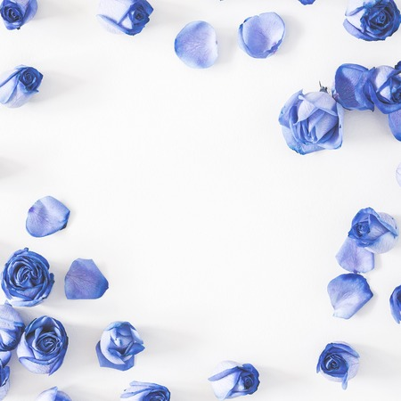Flowers composition. Frame made of blue rose flowers on gray background. Flat lay, top view, square, copy space 版權商用圖片