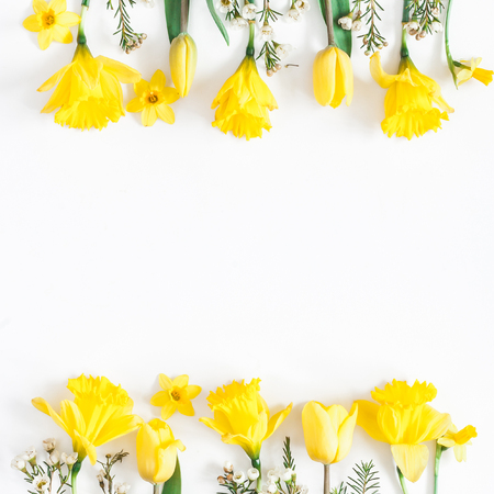 Flowers composition. Spring narcissus and tulip flowers on white background. Flat lay, top view, square, copy space