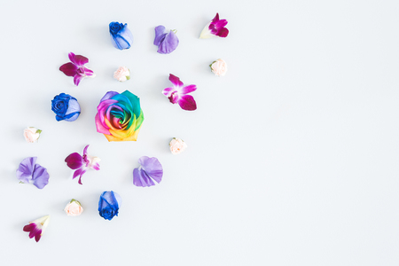 Flowers composition. Rainbow flowers on pastel blue background. Flat lay, top view, copy space