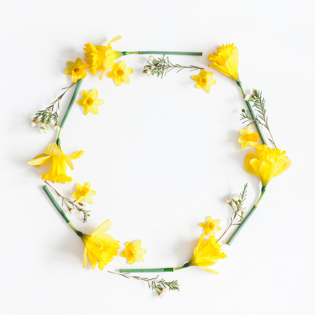 Flowers composition. Spring narcissus flowers on white background. Flat lay, top view, square, copy space 写真素材