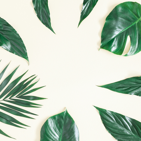 Leaf pattern. Green tropical palm leaves on yellow background. Summer concept. Flat lay, top view, copy space, square 写真素材