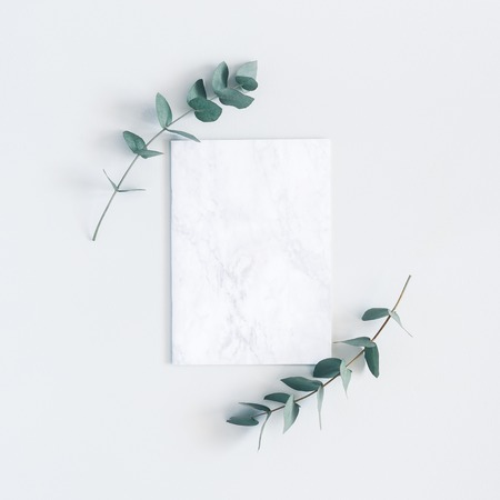 Marble paper blank, eucalyptus branches on pastel gray background. Flat lay, top view, square, copy space