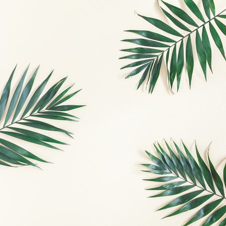 Leaf pattern. Green tropical palm leaves on pastel yellow background. Summer concept. Flat lay, top view, copy space, square Zdjęcie Seryjne