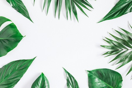 Green tropical palm leaves on gray background. Summer concept. Flat lay, top view, copy space