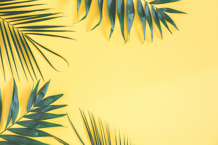 Tropical palm leaves on yellow background. Summer concept. Flat lay, top view, copy space