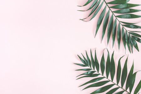Tropical palm leaves on pastel pink background. Summer concept. Flat lay, top view, copy space